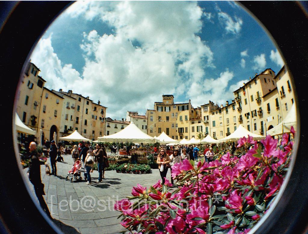 Piazza Anfiteatro Fisheye Spring by Eleonora Borelli